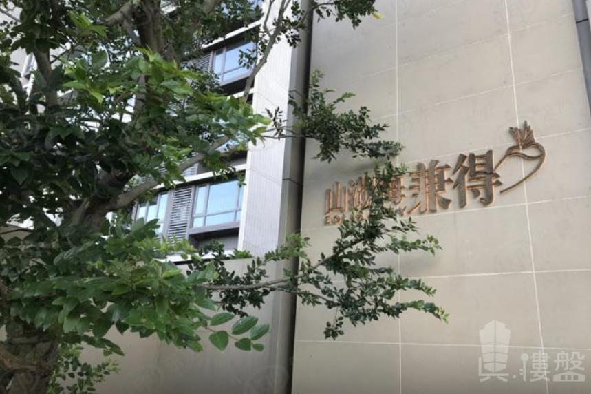 時代山湖海兼得|首期10萬|香港銀行按揭|鐵路沿線優質物業 (實景航拍)