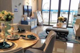 敏捷海灣城第9期 首期10萬 大型屋苑 名店商場 鐵路沿線優質物業