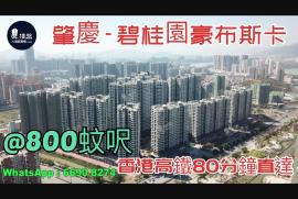 碧桂園豪布斯卡_肇慶|首期10萬|香港高鐵80分鐘直達|香港銀行按揭 (實景航拍)