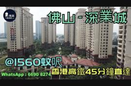 深業城_佛山 @1560蚊呎 香港高鐵45分鐘直達 香港銀行按揭 (實景航拍)