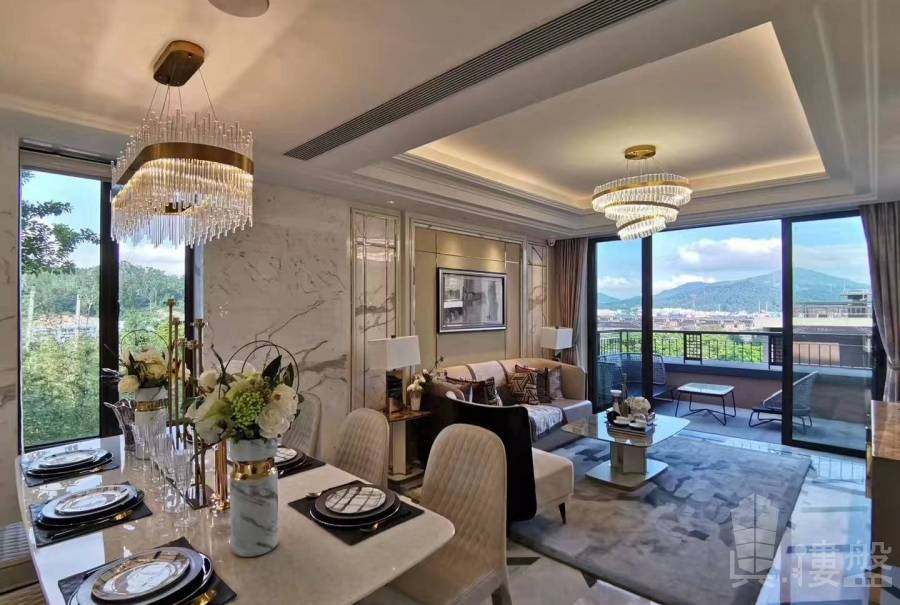 華府國際花園|首期3萬|現樓發售|香港銀行按揭 (實景航拍)