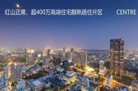 同創華著公館_深圳 首期5萬(減) 鐵路沿線 香港銀行按揭(實景航拍)