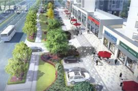 碧桂園星悅_惠州 首期10萬 大型屋苑 即買即住 香港銀行按揭